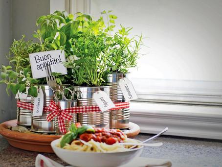 Herbs-Medicinal or Culinary