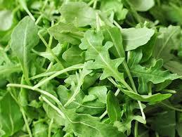 Arugula Lettuce