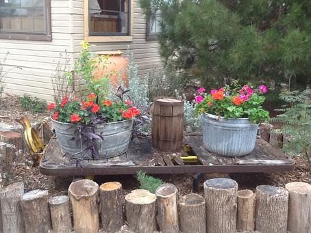 Junk Gardening