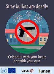 end celebratory gunfire IANSA.jpg