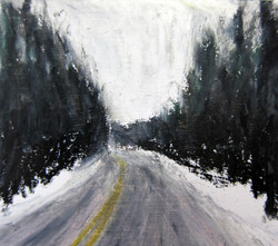 Snowy Walden Woods