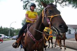 SAR at Stampede 2015 - Horse Smiles