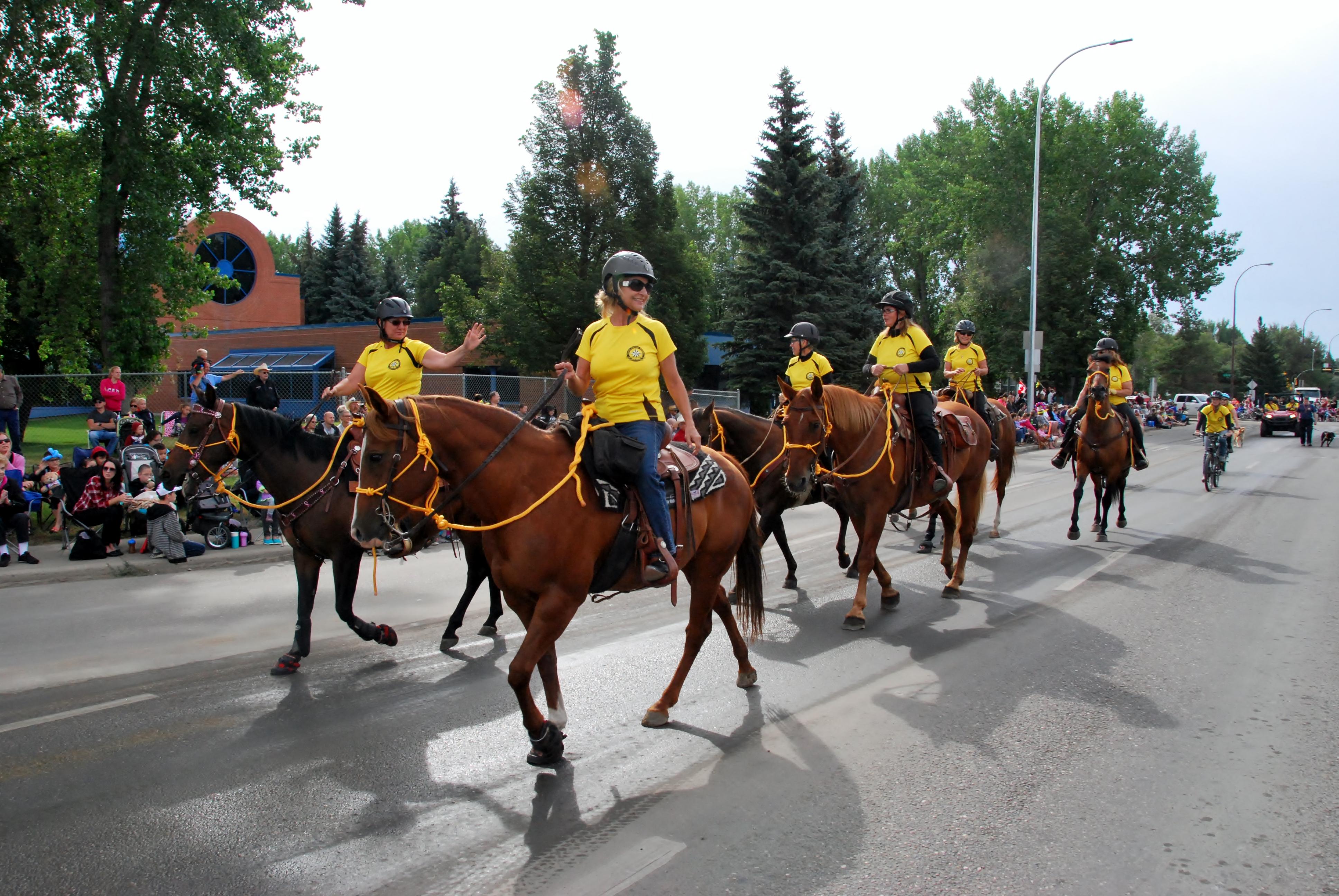 SAR at Stampede 2015 - Equine wave
