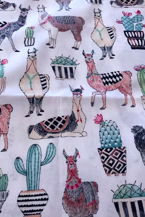 Ranita Ana Camellos y cactus