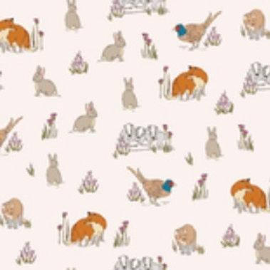 Ranita Ana zorros y conejos