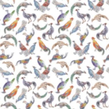 Ranita Ana gallos de colores