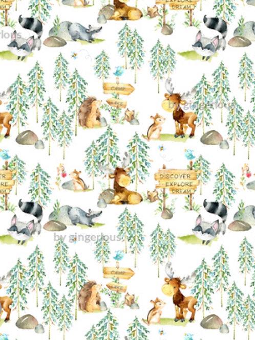 Ranita Santi animales en el bosque y valla
