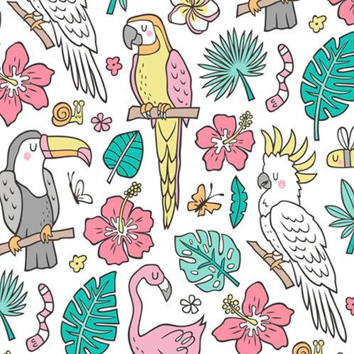 Ranita Santi pájaros de la selva