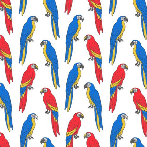 Ranita Ana loros azules y rojos