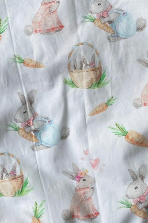 Ranita ana conejos y zanahorias