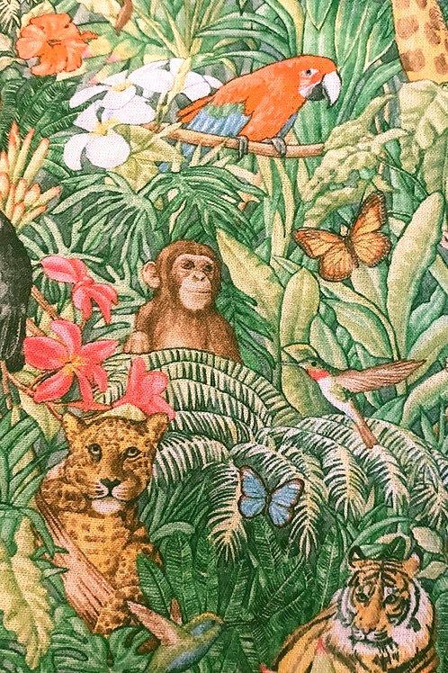 Ranita ana animales escondidos en la selva