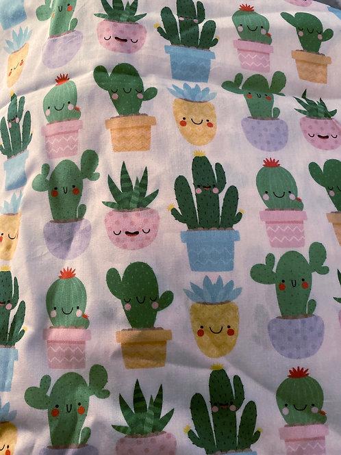 Ranita Ana cactus y macetas felices