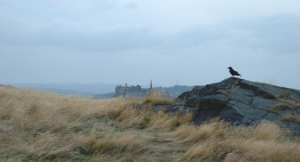 Edinburgh Castle and Crow from Whinny Hill