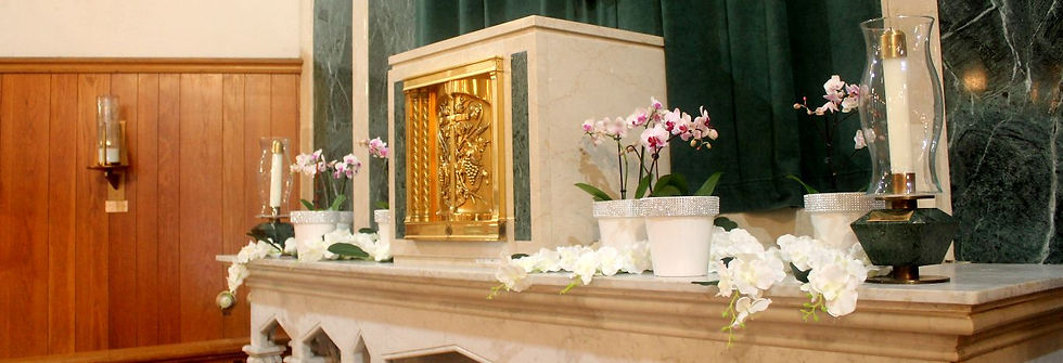 tabernacle-orchids-h.JPG