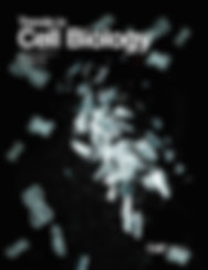 TCB Cover.jpg