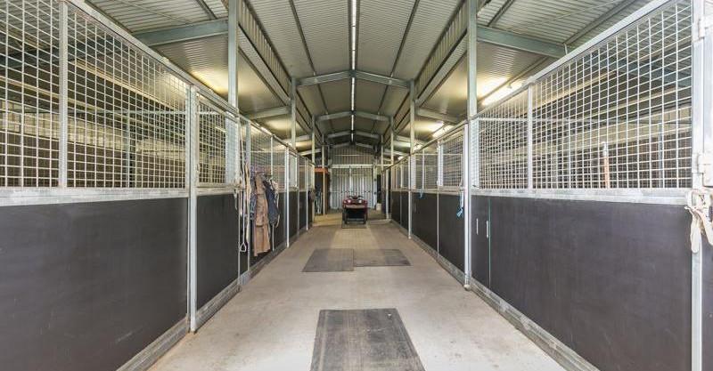 fin stables.jpg