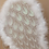 Thumbnail: Angel Wings with Feathered Edge