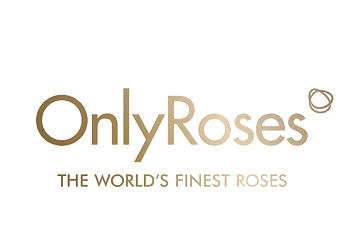 Only-Roses_edited.png