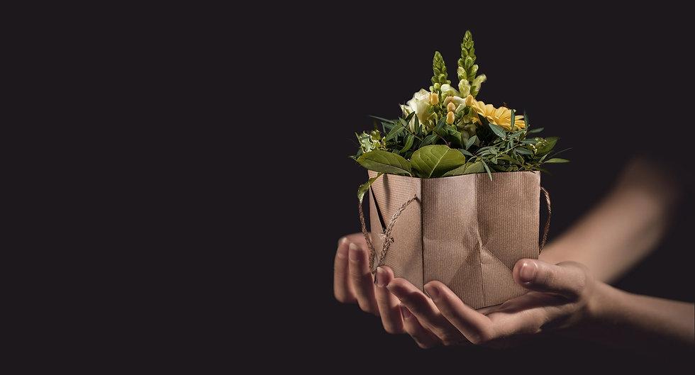 coffret cadeau fete des meres charbon actif ecologique