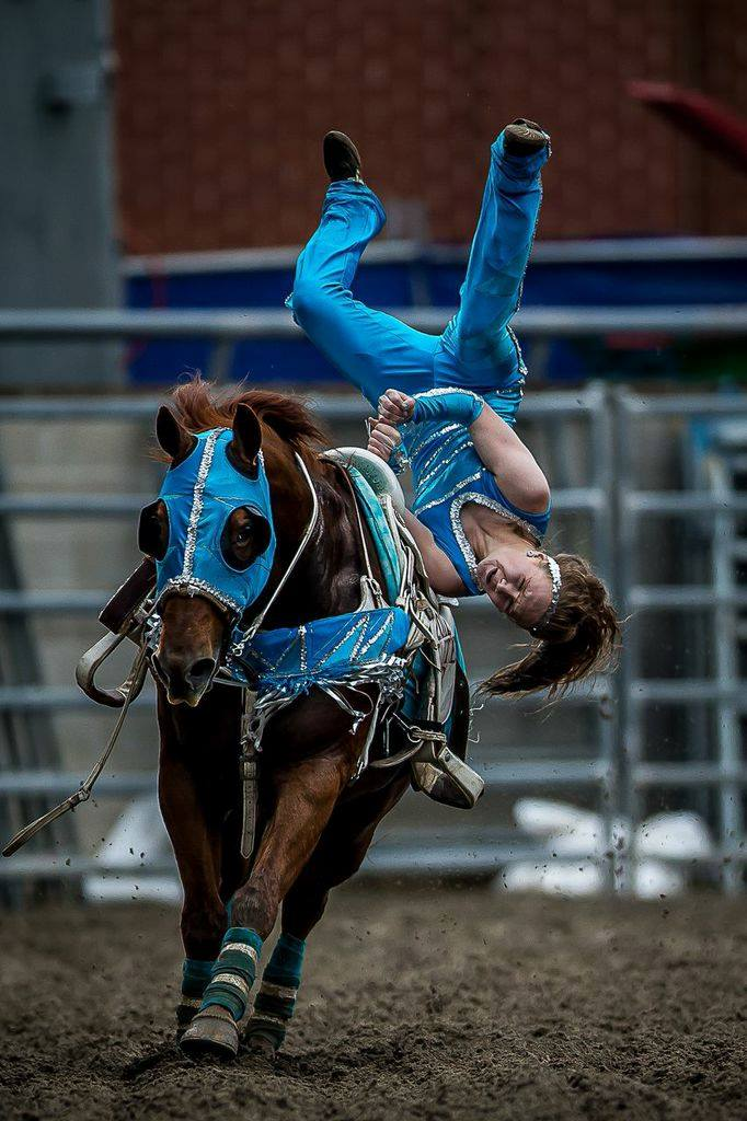 Australian Trick Riding Championship