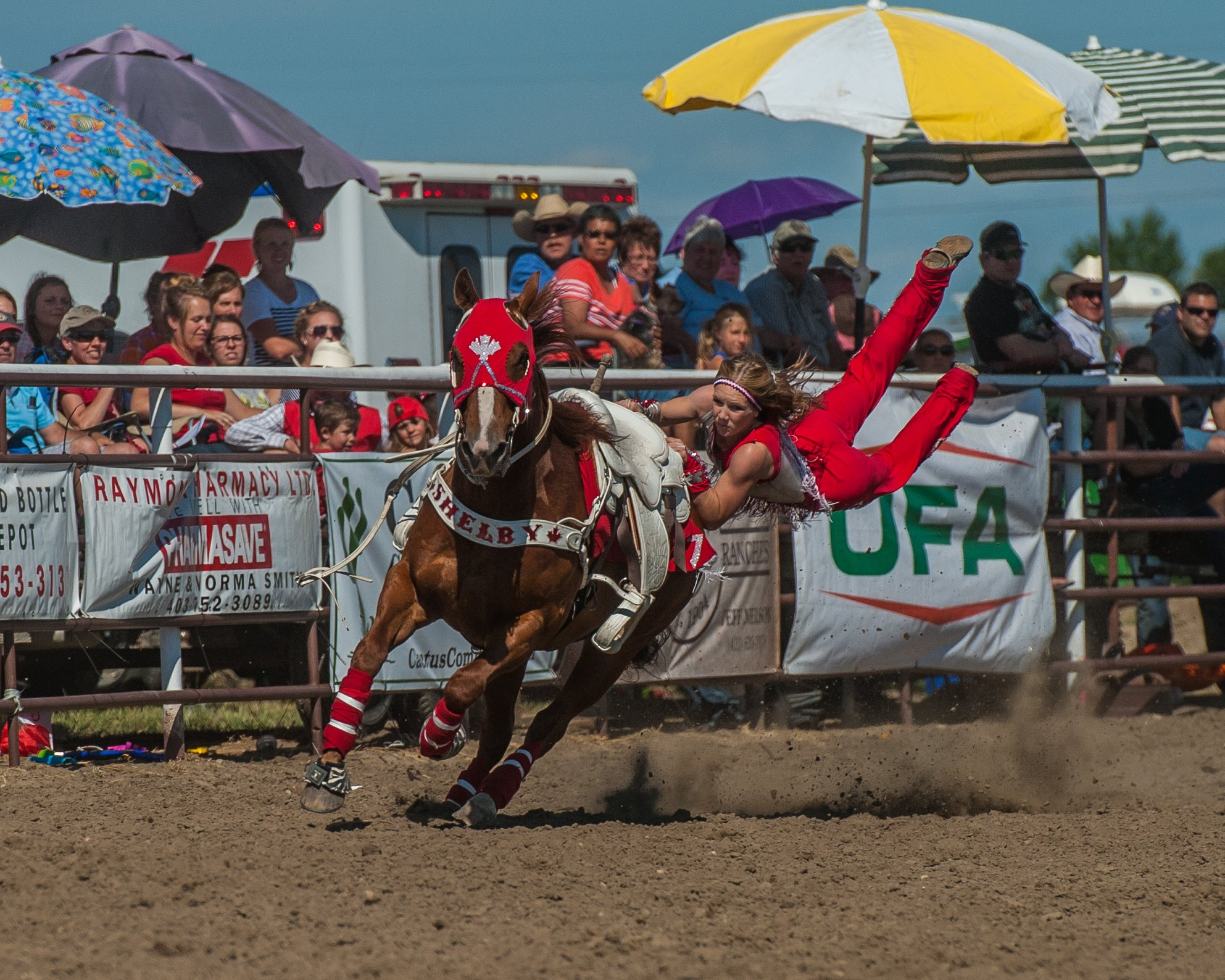 Crooper Vaults at the Raymond Rodeo