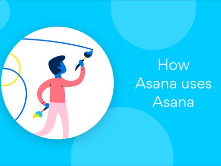 Cómo utiliza Asana: consejos para aumentar la creatividad