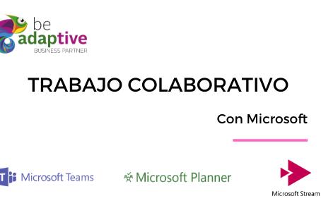Trabajo Colaborativo con Microsoft