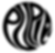 LogoPupiltranstrans17.png