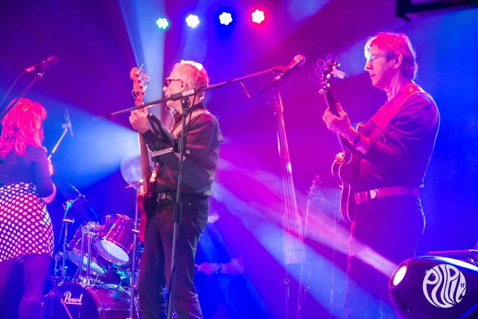 Shakin Daddes Band