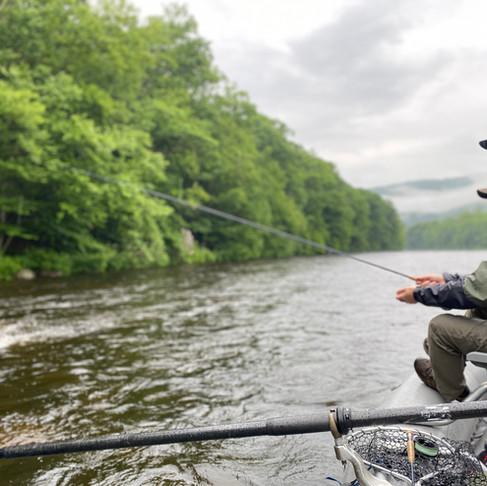 Fly Fishing Western Massachusetts