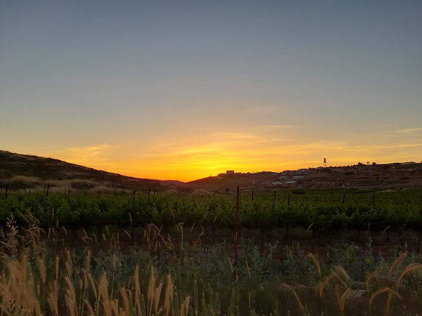 Eish Kodesh Sunrise.jpeg
