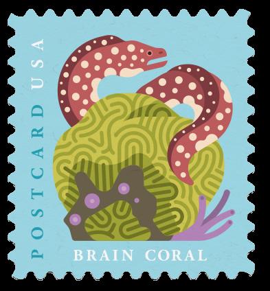 USPS eel stamp