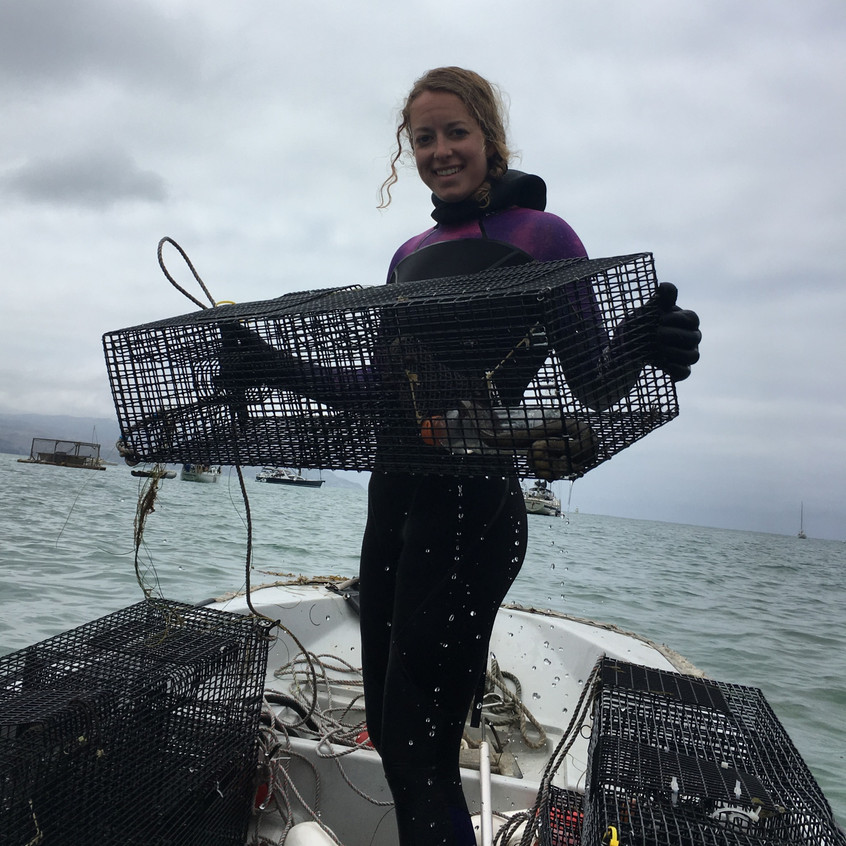 Pulling up eel traps