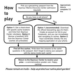 The Secret Life of Larval Fish: How to Play