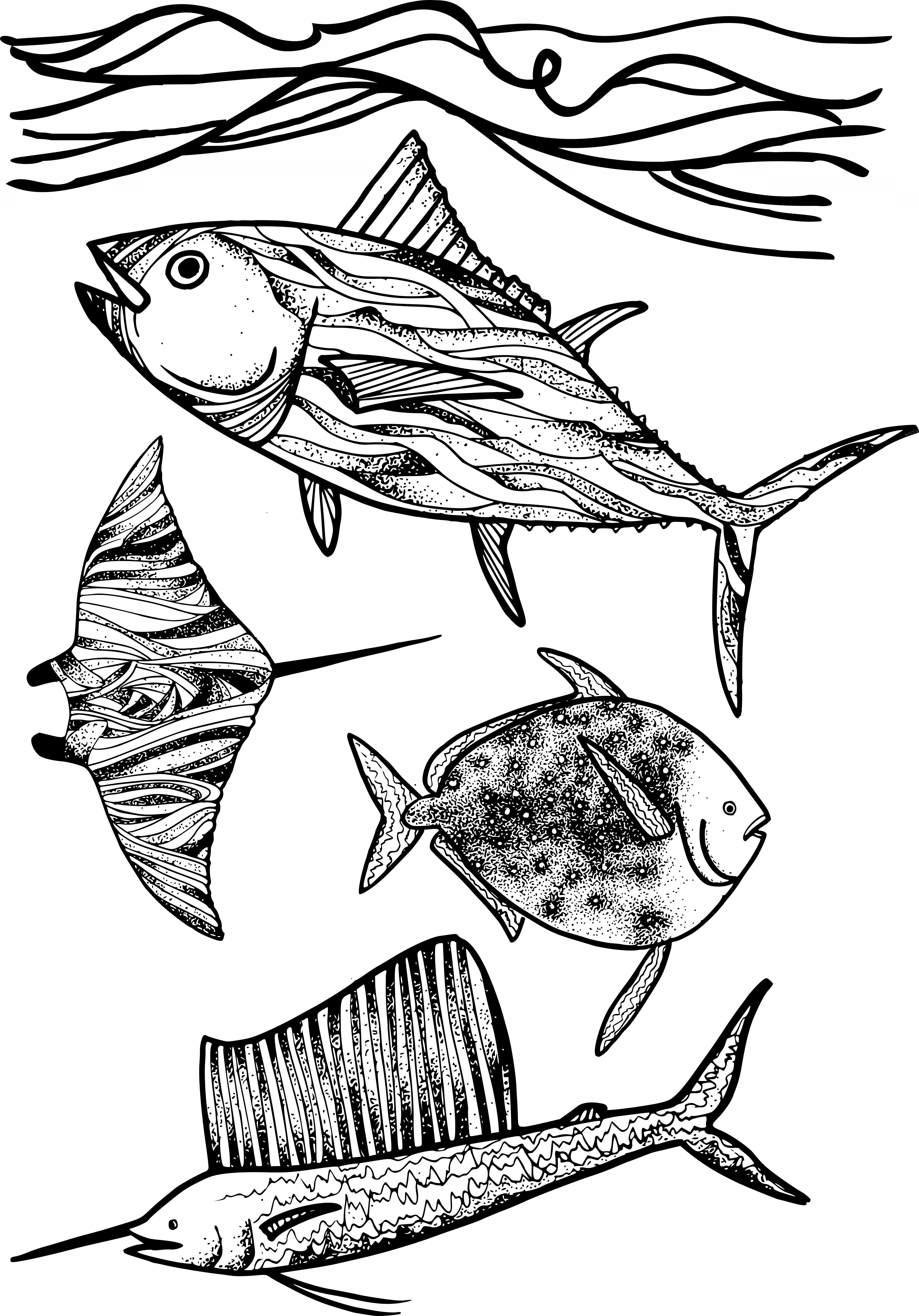 Tuna conference