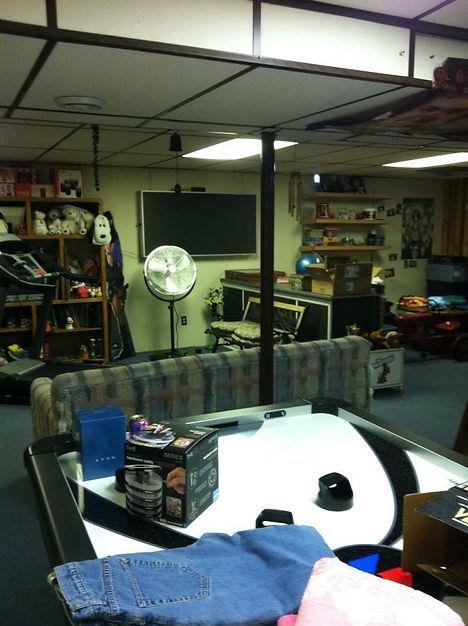 organize basement western mi grand rapids