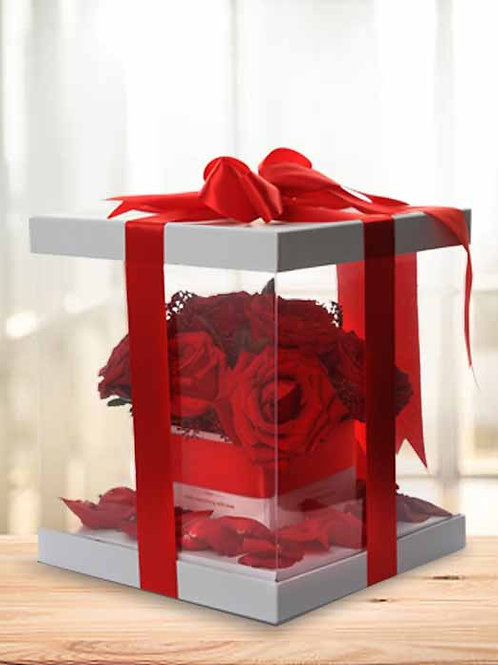 Red Roses in Elegant Transparent White Box