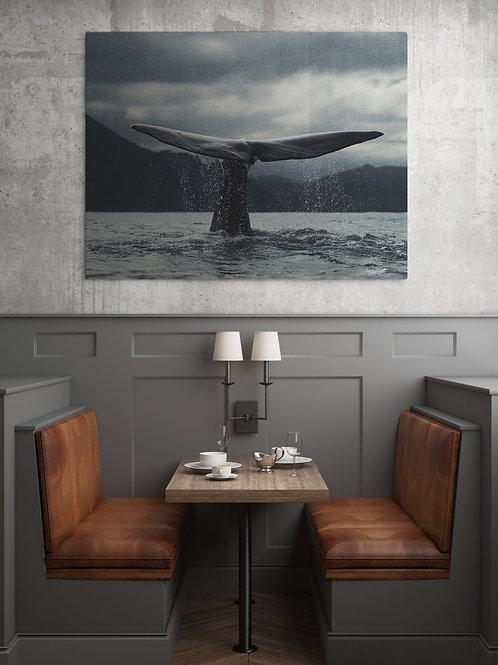 Хвост кита 2