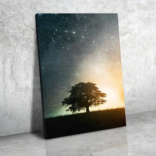 Дерево в звездах