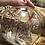 Thumbnail: Wildwood NJ Christmas tree holiday ball ornament