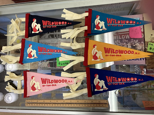 Wildwood by the sea pennant