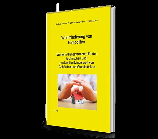Buch-Cover_3D_Wertminderung.png