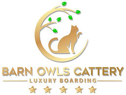 barn owls logo white.jpg