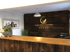 Barn Owls Reception.png