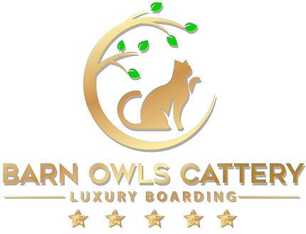Barn Owls white logo.jpg