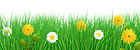 grass border croped.png
