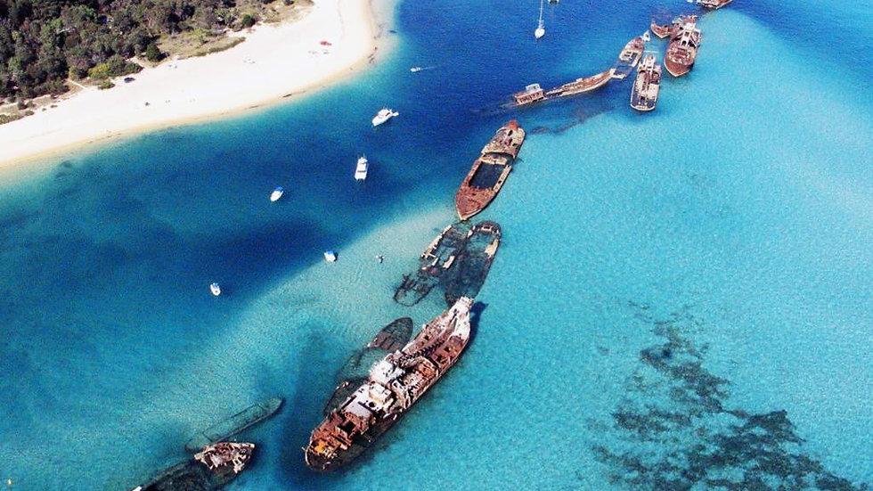 Dolphin Cruise To Tangalooma Wrecks