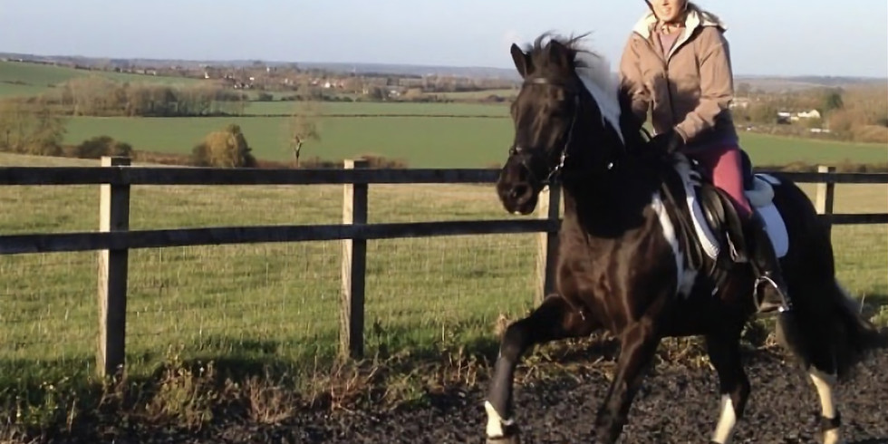 Gallops Training for Speed and Fitness with Amy Kearney at Manor Farm, Marsworth, nr Tring HP23 4NA. First Group 11am.