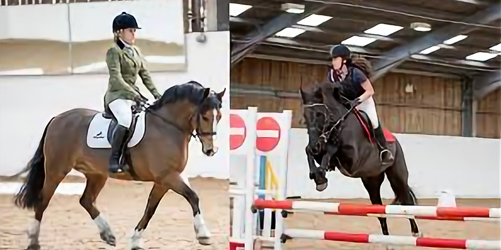 COMBINED TRAINING - FLATWORK AND SJ - Last call!