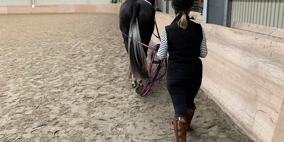 CANCELLED - LUNGEING AND LONG REINING WITH TAMSIN ADDISON